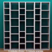biblioteca-en-modulos-para-decoracion_MLA-O-115274781_1148