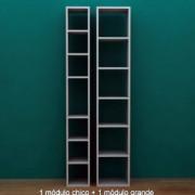 biblioteca-en-modulos-para-decoracion_MLA-O-115274781_9467